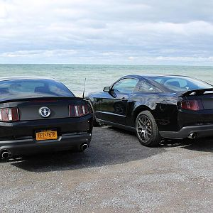 Hanging with Brandon out in Oswego. Mustang twins!