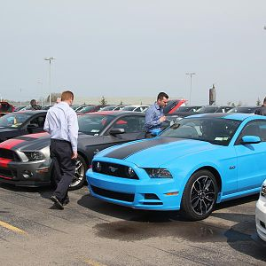 2014 50th Anniversary Mustang Show West Herr 031