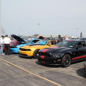 2014 50th Anniversary Mustang Show West Herr 035