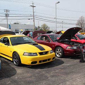 2014 50th Anniversary Mustang Show West Herr 041