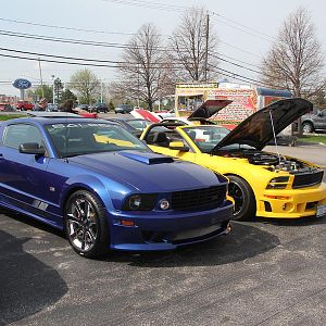 2014 50th Anniversary Mustang Show West Herr 045