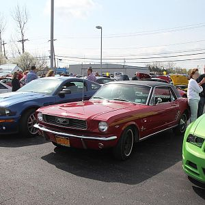 2014 50th Anniversary Mustang Show West Herr 053