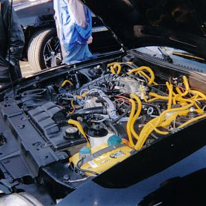 BLACK AND YELLOW ENGINE BAY (2)